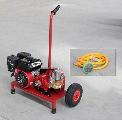 Portatif Benzinli Tanksız Bahçe İlaçlama Pompası